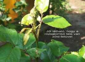 AGRO: kezel, növeszt, erősít
