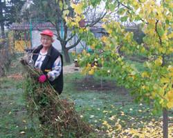 Ősszel is AGRO a kiskertekben – újabb Mészáros-sztori