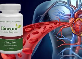 Értisztítás, keringésjavítás - Circuline