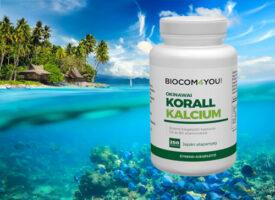 Okinawai Korall Kalciummal gazdagodott a kínálat – az egyik legfontosabb ásvány, exkluzív minőségben